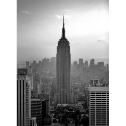 Topný obraz -New York Empire State Building