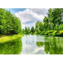 Topný obraz - Řeka