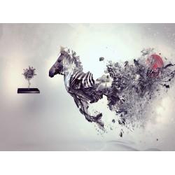 Topný obraz - Abstraktní zebra