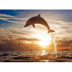 Topný obraz - Skákající delfín