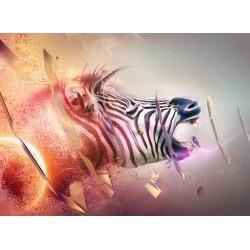 Topný obraz - Zebra