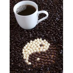 Topný obraz - Kávová zrna a Yin Yang