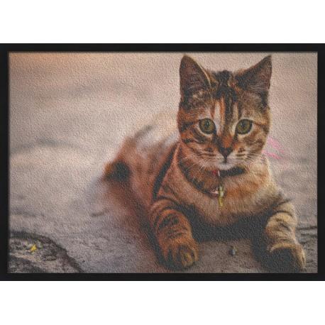 Topný obraz - Kočka