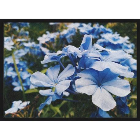 Topný obraz - Modré květy