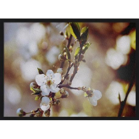 Topný obraz - Kvetoucí jabloň