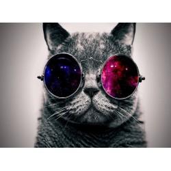 Topný obraz - Kočičí guru