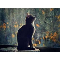 Topný obraz - Kočičí silueta