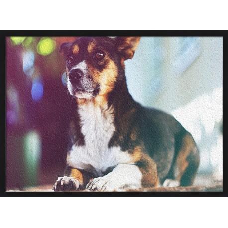 Topný obraz - Ležící psík