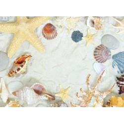 Topný obraz - Písečná pláž