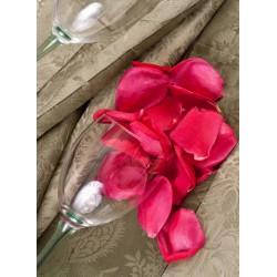 Topný obraz - Plátky růže