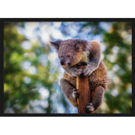 Topný obraz - Koala