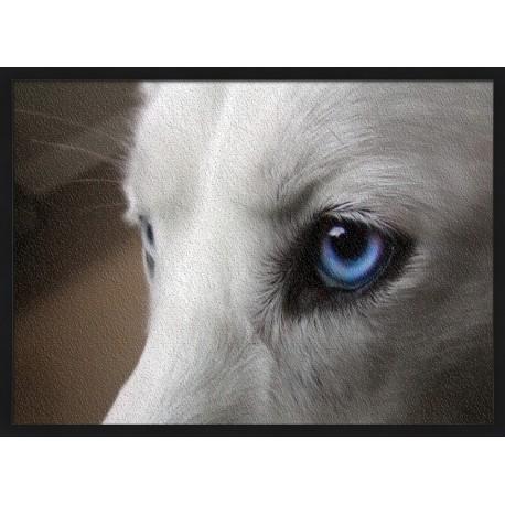 Topný obraz - Psí oči