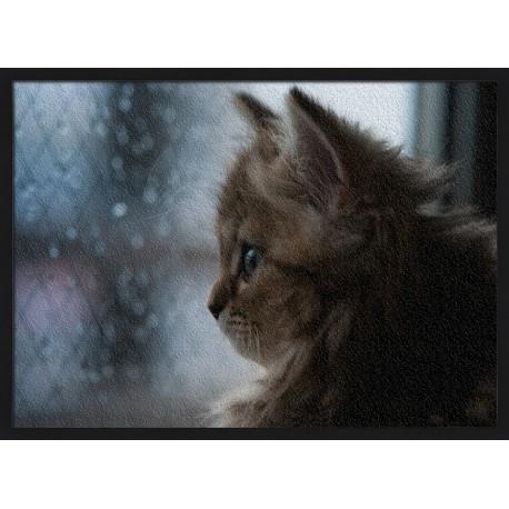Topný obraz - Kotě u okna
