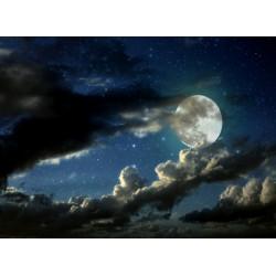 Topný obraz - Měsíc