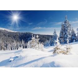 Topný obraz - Zasněžená příroda