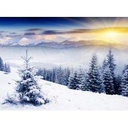 Topný obraz - Zasněžené údolí