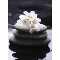 Topný obraz - Masážní kameny s květy