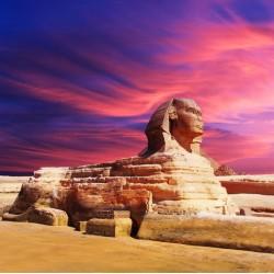 Topný obraz - Sfinga