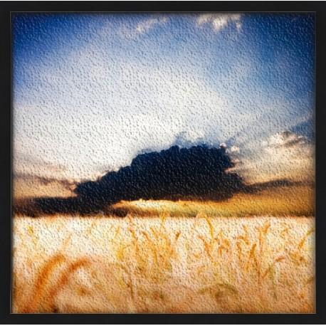 Topný obraz - Mrak nad polem