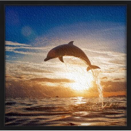 Topný obraz - Delfín při západu slunce