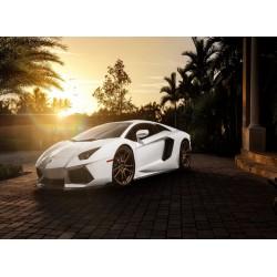 Topný obraz - Luxusní auto