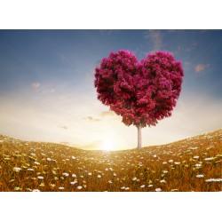 Topný obraz - Stromové srdce