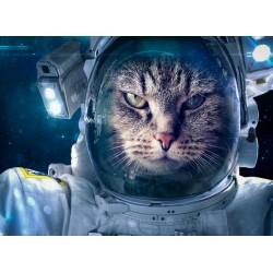 Topný obraz - Kočičí kosmonaut