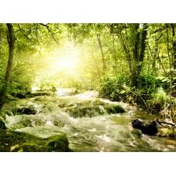 Topný obraz - Potok v lese
