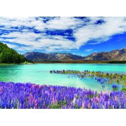 Topný obraz - Nový Zéland