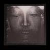 Topný obraz - Buddha - 250W - 530 x 530 mm