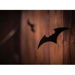 Topný obraz - Batman Batarang