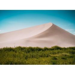 Topný obraz - Písečné duny