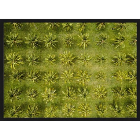 Topný obraz - Palmy z perspektivy