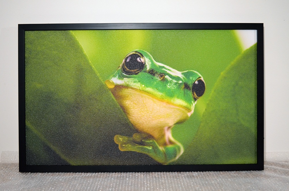 360W - Infrapanel Žába